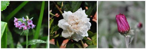 Gardenmosaic2byprosestitch